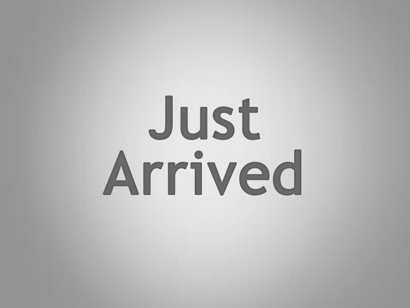 2009 BMW 1200CC DUAL SPORTS R1200 GS ADVENTURE 08